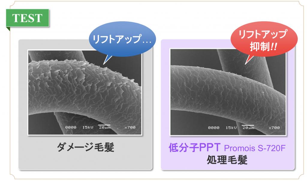 シルクPPTの表面回復効果